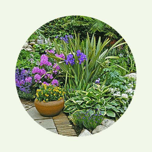 ... für Blumen und Stauden